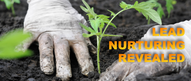 Lead Nurturing Revealed